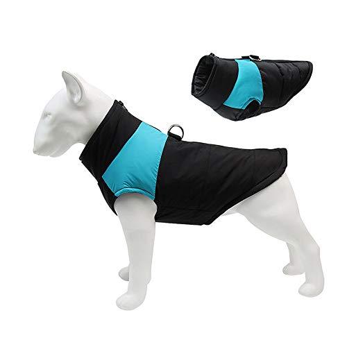 C/N Abrigos para Perros Impermeables con Agujero de arnés A