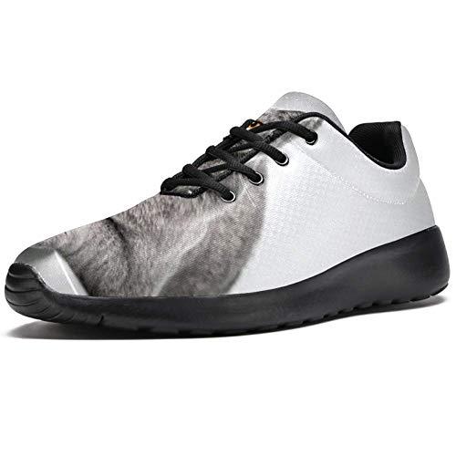 TIZORAX Scarpe da corsa per uomo gatto sdraiato sul tavolo, scarpe da ginnastica in rete traspirante per camminate, escursionismo, tennis, taglia 4,5, Multicolore (Multicolore), 46 EU