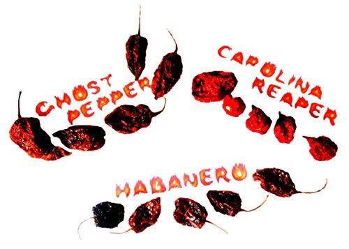5x carolina reaper 5x naga bhut jolokia ghost pepper 5x habanero pods GUINNESS WORLD RECORD il peperoncino intero più piccante del mondo essiccato