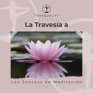 ! ! ! ! ! ! ! ! La Travesía a la Paz con Sonidos de Meditación ! ! ! ! ! ! ! !