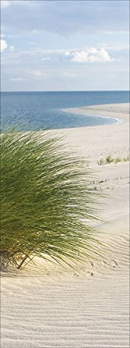 PRO-Art gla661c - Quadro da Parete su Vetro \Sand Sedge I\