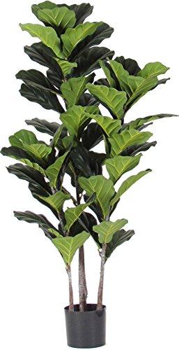 Verdevip Ficus Pandorato - Pianta Finta Artificiale da Arredo Interno con Tronco Real Touch - Alto 140 cm