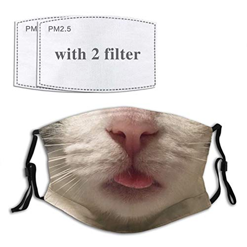 Arlumi Funny Cat Face Mask Mouth Cover with Filter Pocket Washable Face Bandanas Balaclava Breathable Print Reusable Fabric Masks for Men Women