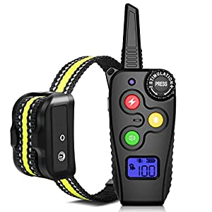 Ankace Shock Collar for Dogs with Remote 2000 Feet Rechargeable Dog Training Collar Waterproof Dog Shock Collar