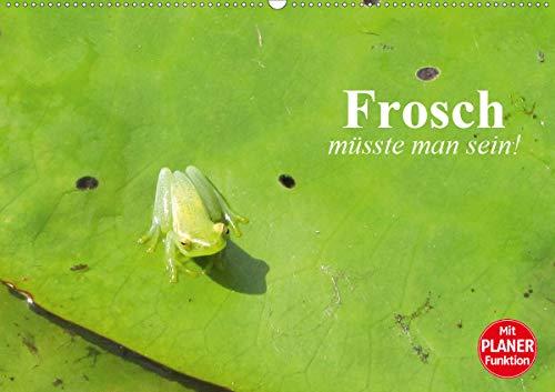 Frosch müsste man sein! (Wandkalender 2021 DIN A2 quer)