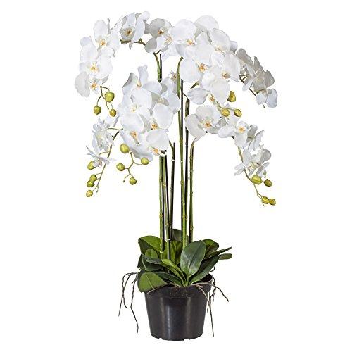 Kunstblume PHALENOPSIS ca 90 cm weiß, WEISS (Orchidee) im schwarzen Kunststofftopf 20 cm.