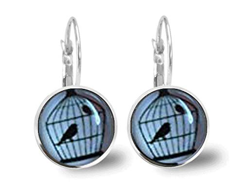 Vogelkäfig-Ohrringe, kuppelförmige Glas-Ornamente, Geschenke für ihren Wellensittich-Ohrring