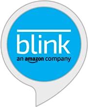 blink xt alexa