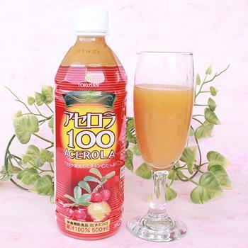 アセロラ100 500ml×4本 沖縄特産販売 ビタミンCたっぷり アセロラ果汁100% 割り材やジュースに