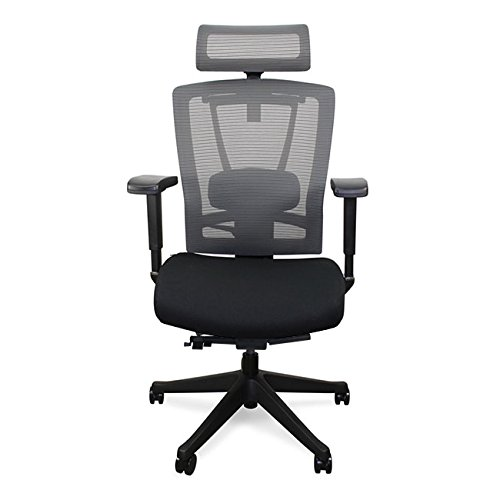 Autonomous ErgoChair - Premium Ergonomic Office Chair - All Black