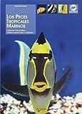 Los peces tropicales marinos (Animales)