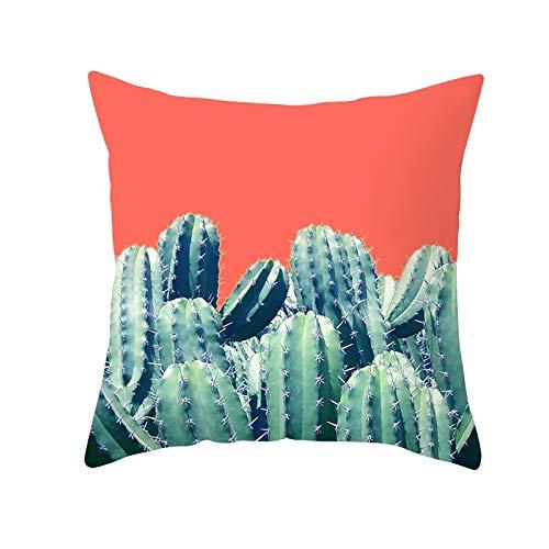 Funda de Cojín Decorativos Funda de Almohada Cactus Cuadrado Terciopelo Suave Cojines Decoracion con Cremallera Invisible para Sofá Cama Decoración Hogar Funda de Cojín M3260 Pillowcase+core,50x50cm