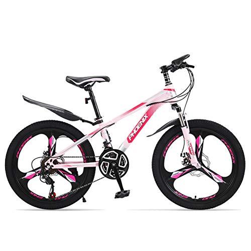 Axdwfd Infantiles Bicicletas Bicicleta De Montaña De 20 Pulgadas, Bicicleta De Velocidad Variable De Acero Altamente Carbono, con Mudaguardia Y Diseño De Soporte Trasero (Color : D)