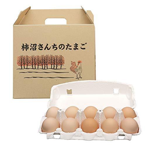 にほんアグリたうん ビタミンAが豊富で おいしい卵 (柿沼)かきぬまさんちのたまご (ピンクM30個入)