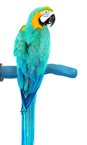 Sweet Feet and Beak Safety Pumice Perch Bird Toy - Features Real Pumice - Trims Nails and Beak Like Pet Grooming Clippers - Promotes Healthy Feet - Safe, Non-Toxic Bird Supplies for Bird Cages