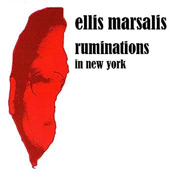 Ruminations in New York