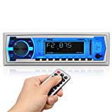 Pyle Marine Bluetooth Stereo Radio - 12v Single DIN Style Boat In dash Radio Receiver System with Built-in Mic, Digital...