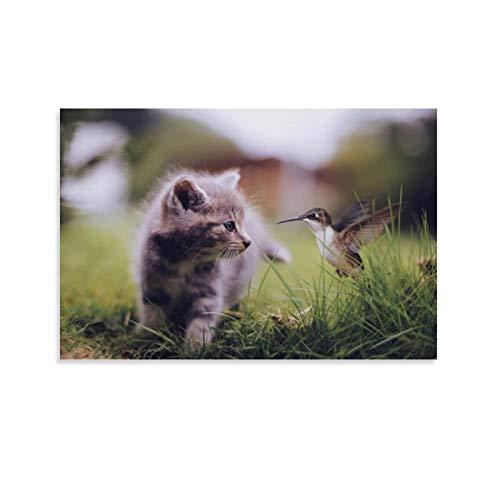 DRAGON VINES Póster, diseño de animales lindos con gato, bebé, césped, pajarito, colibrí, 60 x 90 cm