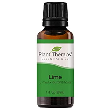 Plant Therapy Lime Essential Oil 30 mL  1 oz  100% Pure Undiluted Therapeutic Grade