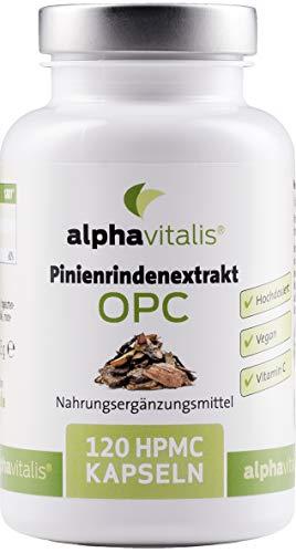 500 mg Pinienrindenextrakt mit OPC je Kapsel + natürliches Vitamin C - ohne Magnesiumstearat - laborgeprüft - 120 vegane Kapseln - hochdosiert