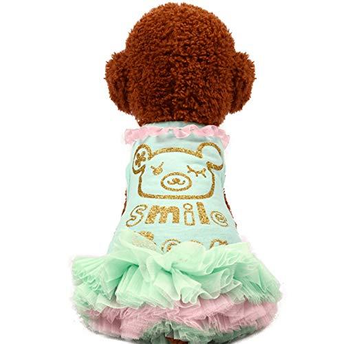 QZXCD Huisdier kleding mode huisdier kleding zomer Teddy beer kleine hond taart rok hond puff rok, XXS, H