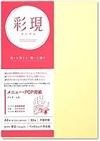 PCM竹尾 プリンタ用紙 彩現 メニュー・POP用 A4 パミス しろ 5 セット 1742070