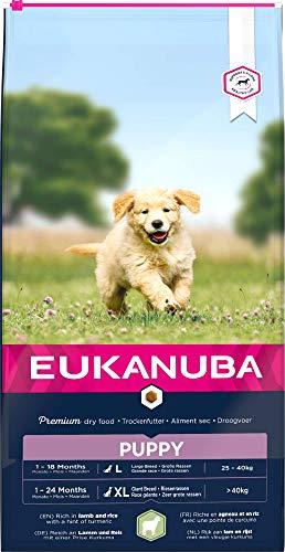 Eukanuba Alimento seco para cachorros en crecimiento de razas grandes, rico en cordero y arroz, 12 kg