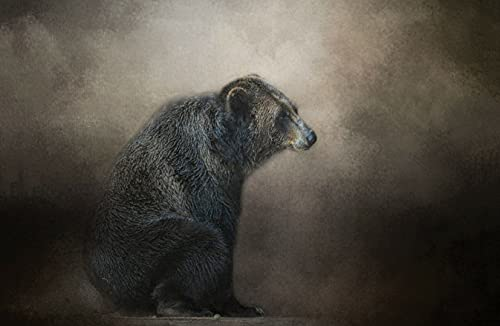 kjell björne veterinär
