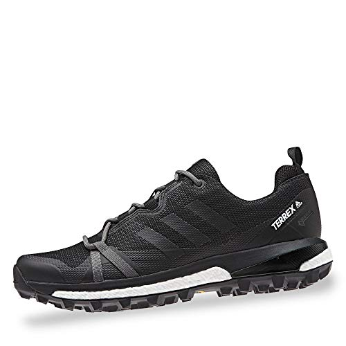 adidas Womens Terrex Skychaser LT GTX Walking Shoe, Carbon/Core Black/Active Pink, 40 2/3 EU