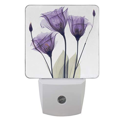Vdsrup Tulip Lavender Night Light Set of 2 Purple Flowers Plug-in LED Nightlights Auto Dusk-to-Dawn Sensor Lamp for Bedroom Bathroom Kitchen Hallway Stairs