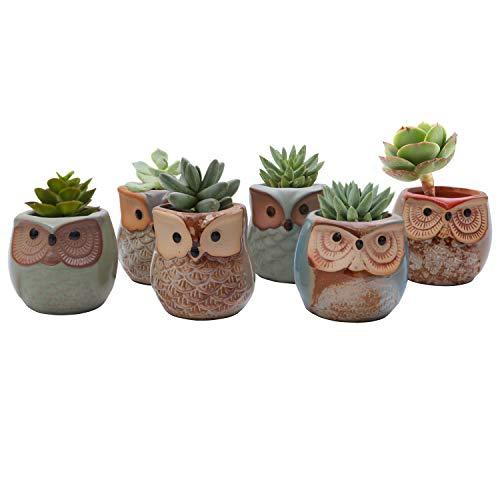 Mini Macetas Ceramica Diseño Búho (Pack de 6) - 6,5cm de Alto - Set Macetas Suculentas con Desagüé - Maceteros Decorativos – Ideal para el Hogar, Oficina, Interiores, Exteriores, Decoración Jardín