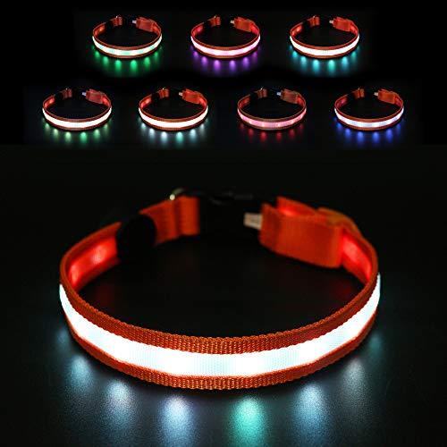 THIS IS DOG Collar de Perro LED - Todos los 7 Colores de luz en un Collar + Modo de Parpadeo Multicolor USB Recargable - Seguridad Nocturna Super Brillante - Resistente al Agua