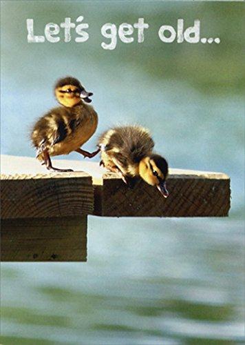 Ducklings On Dock Funny Birthday Card