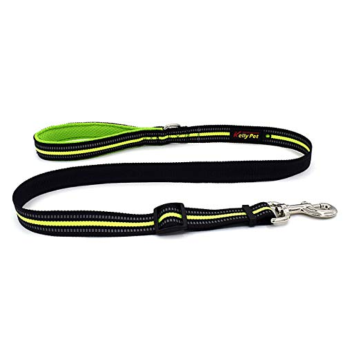 Dog Leash With Padded Handle, Heavy-Duty 5 Foot Long Safety Training Walking Leash For Medium To Large Dogs