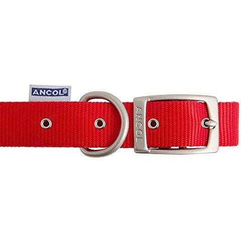 Ancol Patrimonio Nylon Collar de Perro, Mediano, Rojo