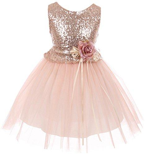 Little Girls Dress Sequins Glitter Floral Tulle Pageant Party Flower Girl Dress Blush Size 2 (K64K28)