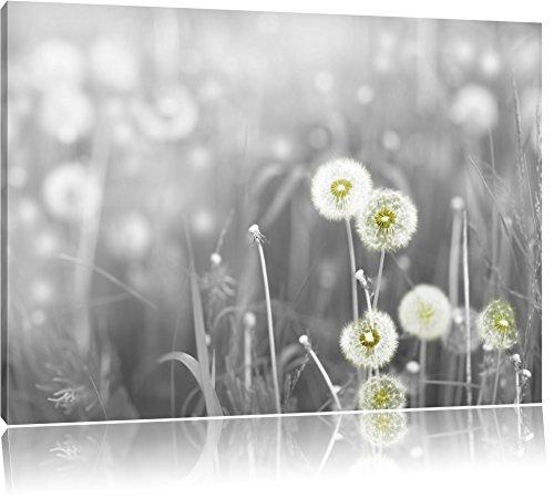 wunderschöne Pusteblumen schwarz/weiß Format: 100x70 auf Leinwand, XXL riesige Bilder fertig gerahmt mit Keilrahmen, Kunstdruck auf Wandbild mit Rahmen, günstiger als Gemälde oder Ölbild, kein Poster oder Plakat