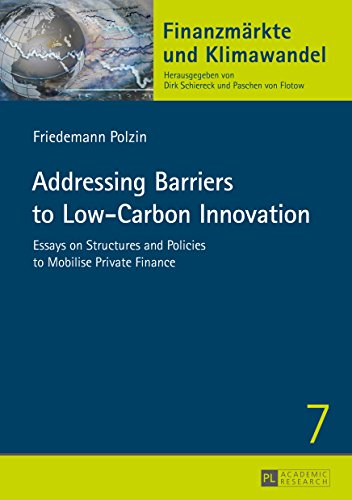 Addressing Barriers to Low-Carbon Innovation: Essays on Structures and Policies to Mobilise Private Finance (Finanzmärkte und Klimawandel Book 7) (English Edition)