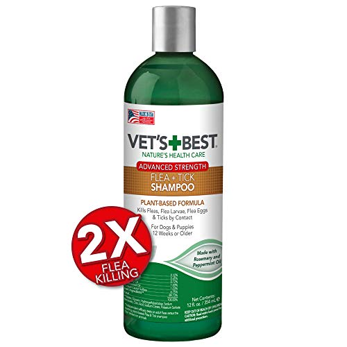 10 Best Flea And Tick Prevention Products For Dogs 2019
