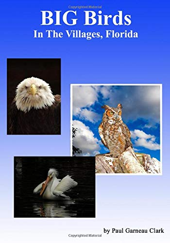BIG Birds in The Villages, Florida: A Guide to