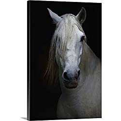 Premium Thick-Wrap Canvas Wall Art Print