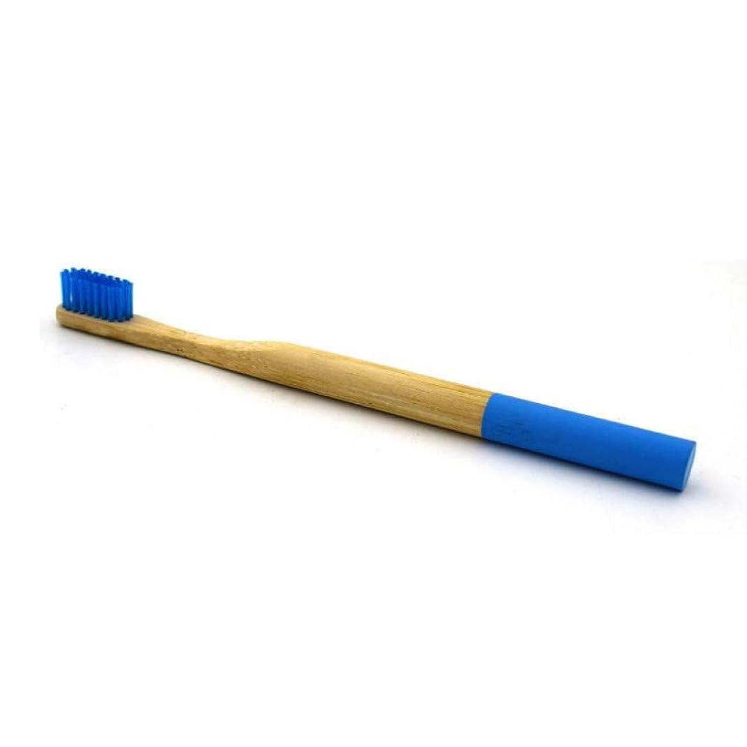暖炉カーテン沈黙派手な大人の天然竹歯ブラシ、ブルー