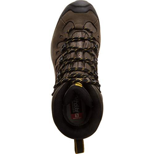 SALOMON Quest 4d 3 GTX, Chaussures de Randonnée Hautes Homme, Gris (Wren/Bungee Cord/Green Sulphur...