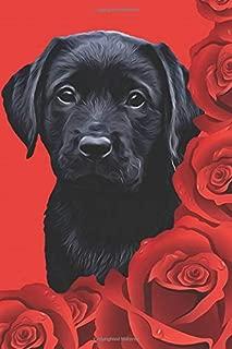 Black Lab Puppy Planner: Dog Wisdom Quotes (Valentine Roses Undated Calendar Notebook 6x9)