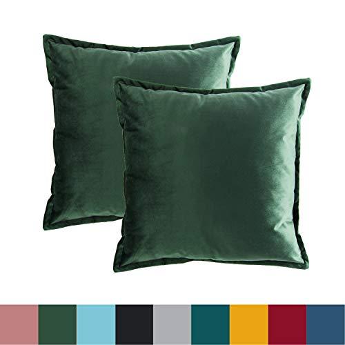 Bedsure Funda Cojin 40 x 40 Verde Oscuro - Juego de 2 Fundas Cojines Decorativas de Terciopelo, Muy Suave, Funda de Almohada Cuadrada para Sofá, Dormitorio y Sala de Estar, con Cremallera