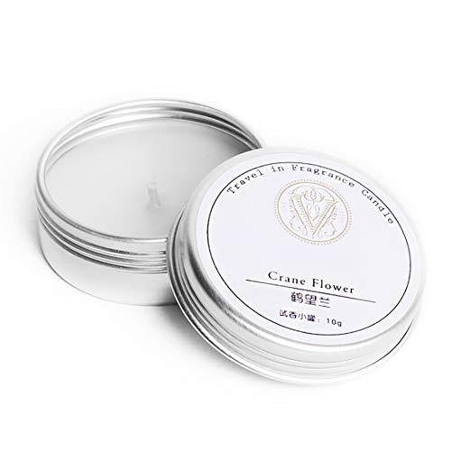 WSY WSYBougies d'aromathérapie, échantillon de Parfum rempli à la Main Test à la Maison Parfum Voyage Huile Essentielle Petite Bougie