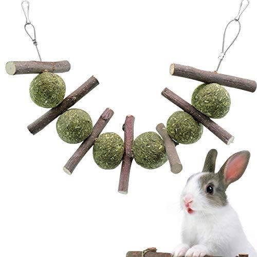 WBYJ Bunny Kauspielzeug Hamster Kauenspielzeug für Zähne Natürliche Timothy Graskuchen Bio-Apfelstäbchen Kaustäbchen Sticks Zahnpflege für Bunny Rabbits Chinchilla Meerschweinchen Papageien