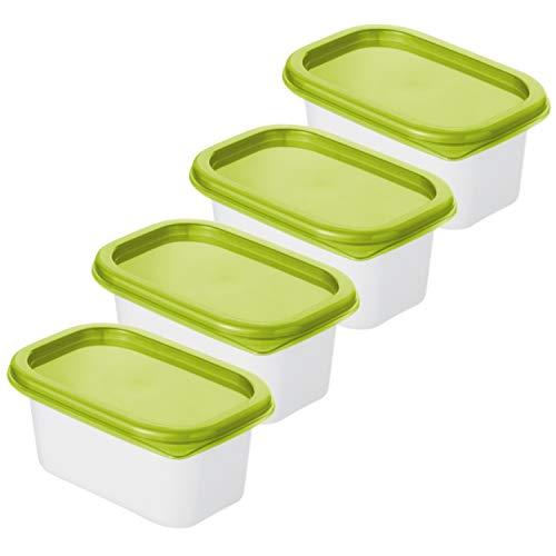Rotho Domino 4er-Set Gefrierdosen 0.2l mit Deckel, Kunststoff (PP) BPA-frei, grün/transparent, 4 x 0,2l (11,7 x 7,5 x 10,8 cm)