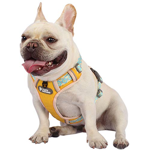 Rhea Rose Cute Dog Harness Pet Soft Adjustable Vest Best Reflective Walking Harness Easy Control for Small Medium Large Dogs Yellow M