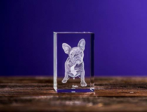 Isonio 3D Glasfoto - Ihr Foto in 3D in Viamant Glas gelasert - 3D Foto für Fotos mit maximal 1-2 Personen (M Hochformat 50x80x45mm)